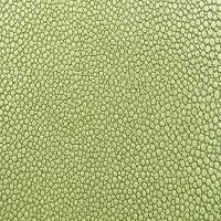 Stingray Vinyl - Green