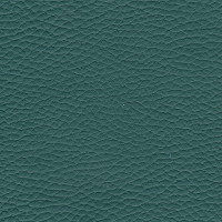 Clearance Leather Hide - Emerald Green