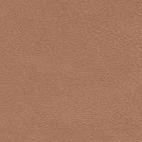 Clearance Leather Hide - Fast Car Beige
