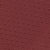 Clearance Leather Half Hide - Raspberry Perf