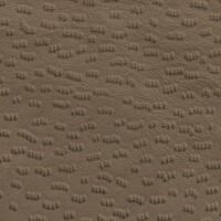 Clearance Leather Half Hide - Safari Beige