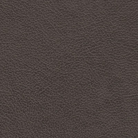 Clearance Leather Hide - Sasquatch