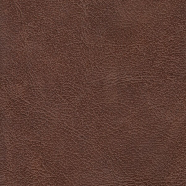 Clearance Leather Half Hide - Vintage Caramel